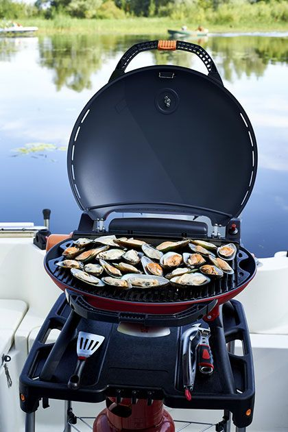 best affordable small gas grill